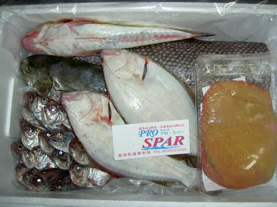おまかせ鮮魚BOX