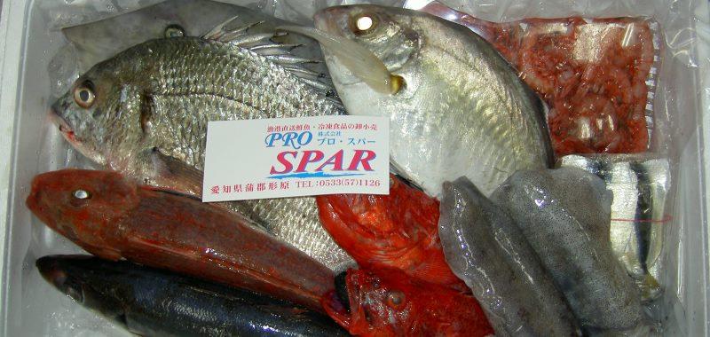 プロ・スパー 鮮魚 おまかせ鮮魚BOX